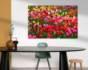 Kleurrijk bollenveld von Joke Beers-Blom
