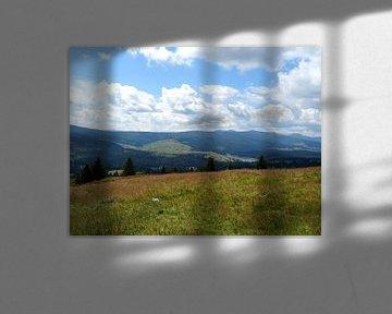 Heuvels in Roemenië  van Wilma Rigo