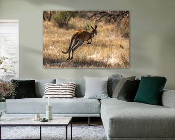 Hopping kangaroo van Joke Beers-Blom