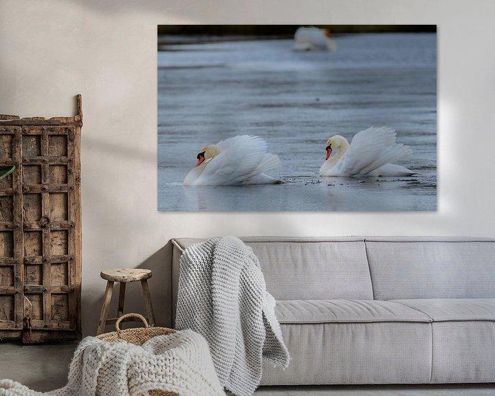 Sfeerimpressie: Zwanenmeer van Andrea de Vries