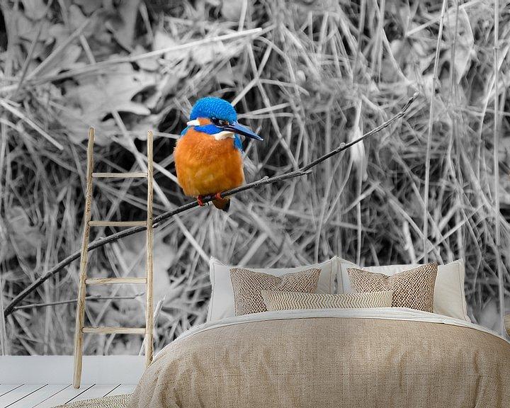 Sfeerimpressie behang: IJsvogel op een takje. van Andrea de Vries