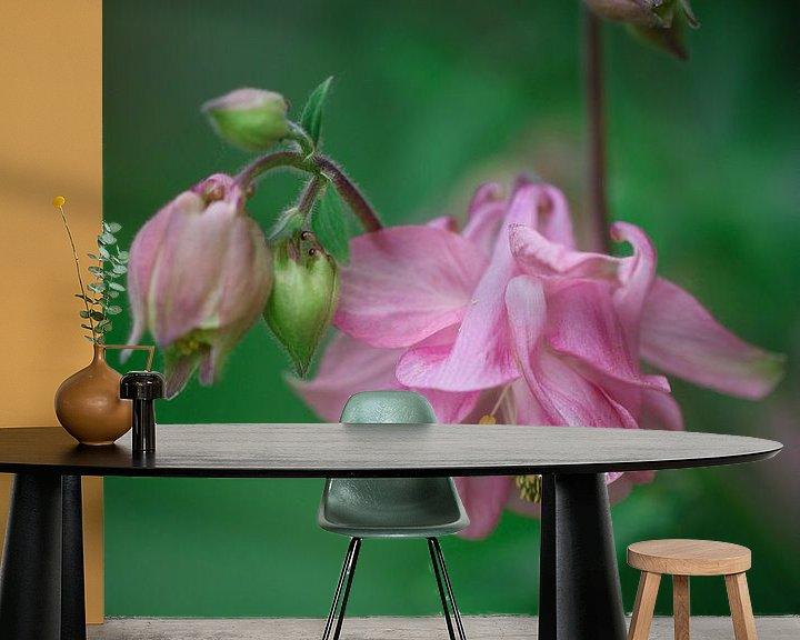 Sfeerimpressie behang: Roze akelei van Lily Ploeg