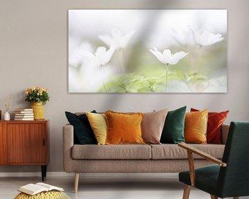 bloeiende bosanemonen van Marieke de Boer