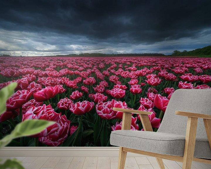 Sfeerimpressie behang: Roze Tulpen van Albert Dros