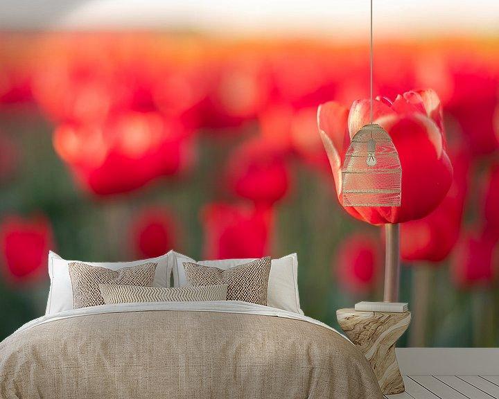 Sfeerimpressie behang: Bloeiende rode tulpen in een veld tijdens zonsondergang van Sjoerd van der Wal