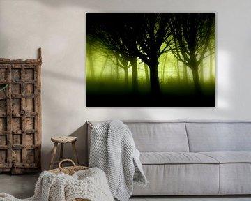 Mystery trees von Dirk Jan Kralt