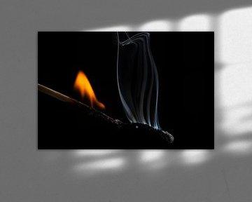 Brandende lucifer von Jan van der Vlies