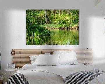 Landscape in the Spreewald area, Germany van Rico Ködder