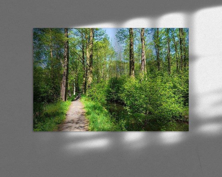 Sfeerimpressie: Landscape in the Spreewald area, Germany van Rico Ködder