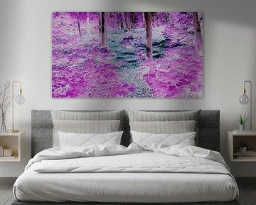 Farben im Wald von Jenny Heß