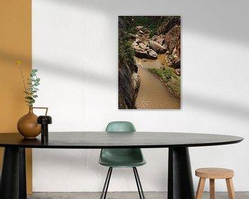 De blide rivier waar rotsen naar beneden vallen van Kim van der Lee