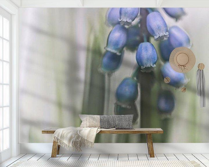 Sfeerimpressie behang: Grape Hyacinth VII (bloem, blauwe druifjes) van Bob Daalder