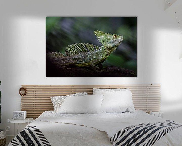 Sfeerimpressie: Basilisk hagedis / basilisk lizard van Elles Rijsdijk
