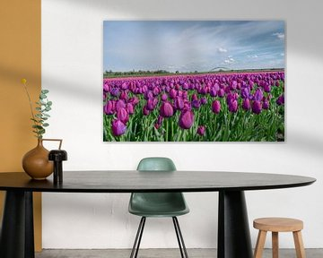 Veld met paarse tulpen von Kim de Been