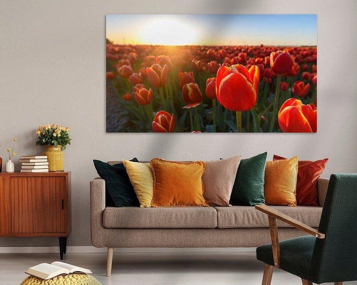 Sfeerimpressie: Tulpen in Flevoland tijdens zonsondergang van Sjoerd van der Wal
