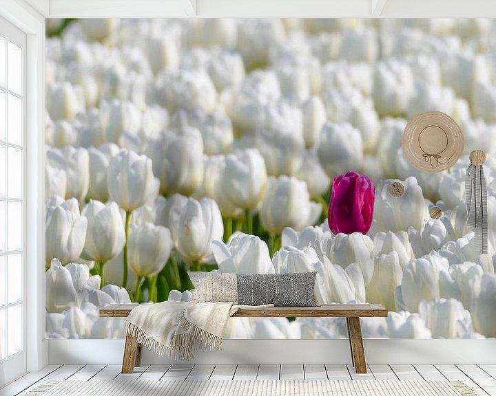 Sfeerimpressie behang: Een gekleurde tulp in een veld van witte tulpen in bloei van Sjoerd van der Wal