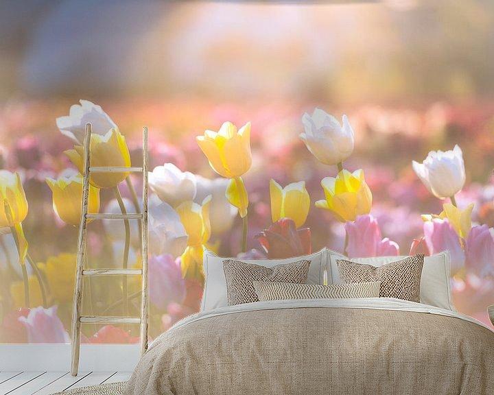Sfeerimpressie behang: Kleurrijke tulpen in een veld tijdens zonsondergang van Sjoerd van der Wal