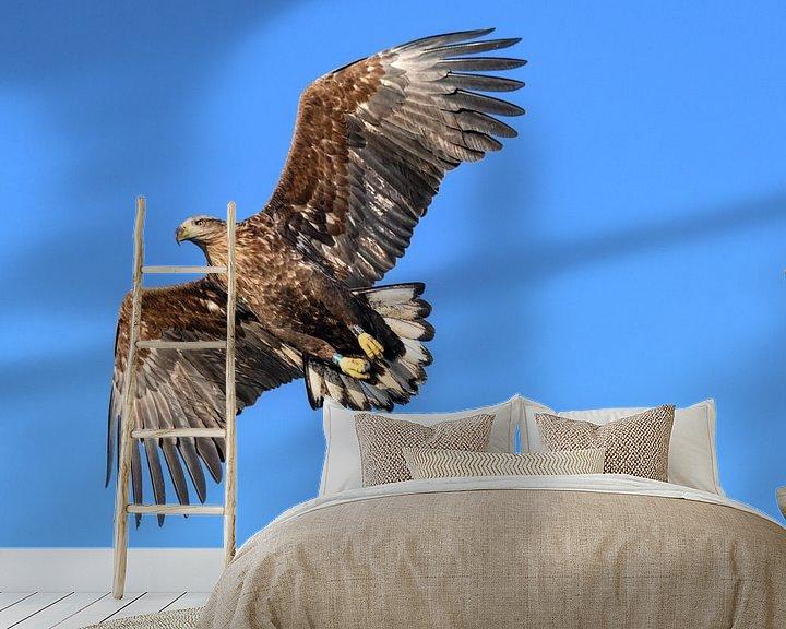 Sfeerimpressie behang: Zeearend  (Haliaeetus-albicilla) jaagt in de lucht boven een Fjord van Sjoerd van der Wal