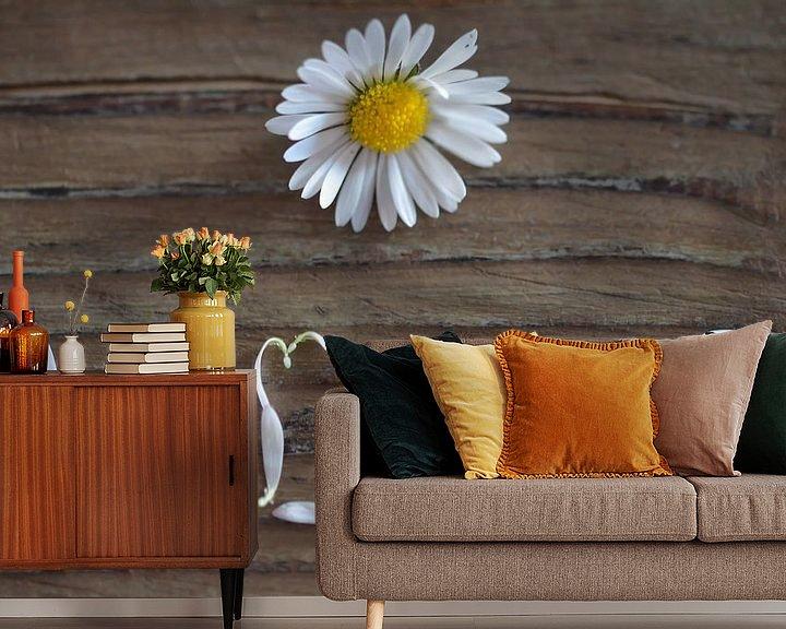 Beispiel fototapete: Durch die Blume gesagt von zwergl 0611