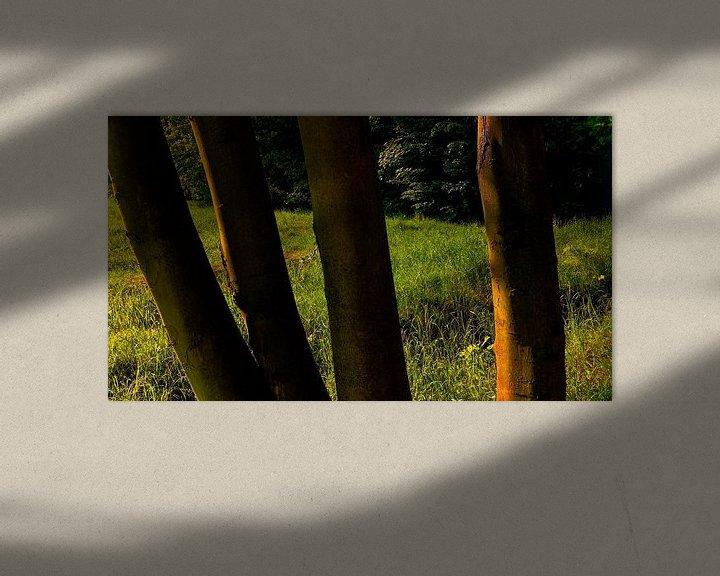 Sfeerimpressie: Landscape Wood and Springfield  van Jenny Heß