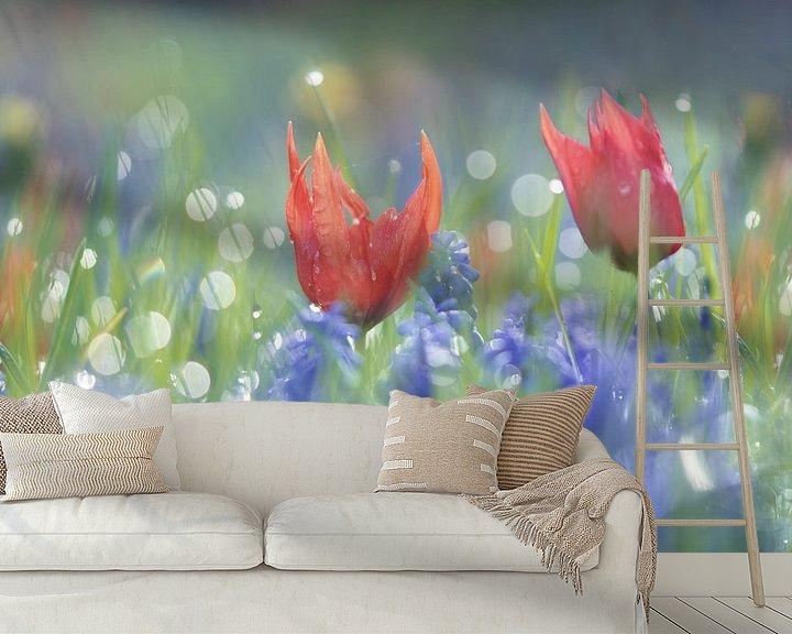 Sfeerimpressie behang: Tulpjes en blauwe druifjes in een bont mengsel, dromerige sfeer, flowerpower van simone opdam