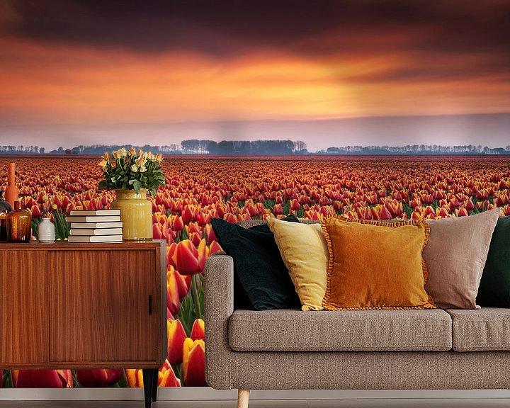 Sfeerimpressie behang: Tulpenvelden tijdens zonsondergang van Martin Podt