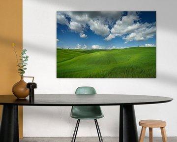Golvende groene heuvels in Toscane
