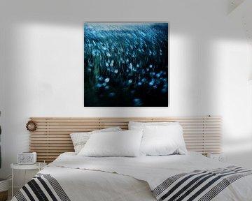dandelion meadow von Dorit Fuhg