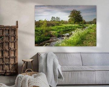 """Landelijk Roden Drenthe """"De Loop"""" van R Smallenbroek"""