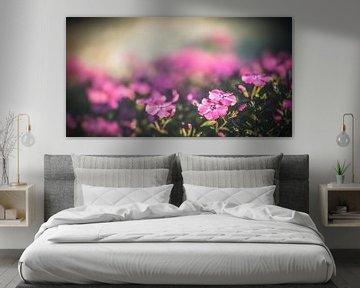 Purple Flowers von William Klerx