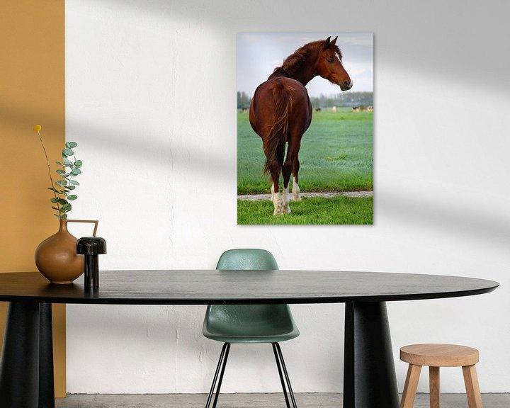 Sfeerimpressie: Paard van Ineke Klaassen