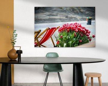 Strand tulpen von Okko Meijer