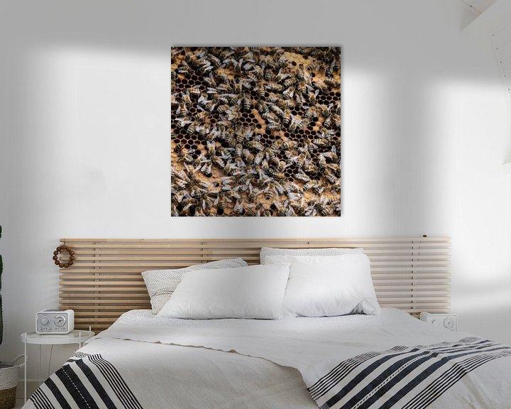 Beispiel: Honingbijen von René Holtslag