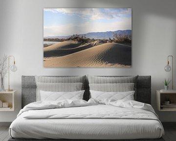 strand heuvel van marijke servaes