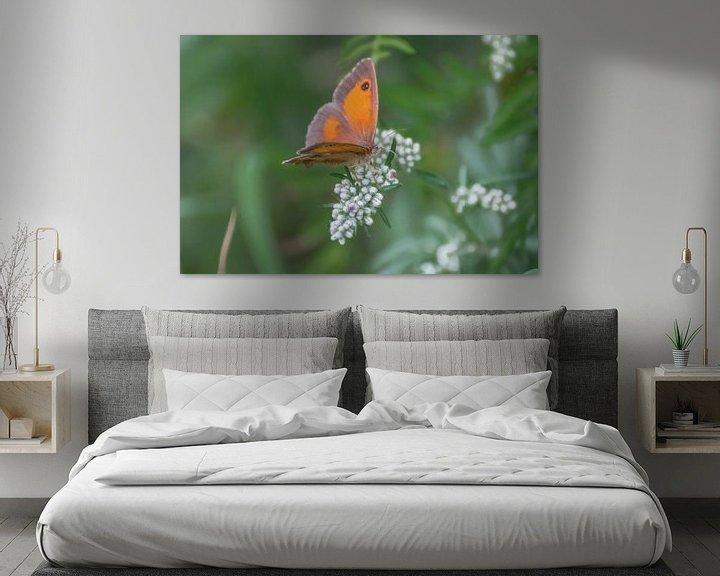 Beispiel: Gatekeeper butterfly von Kim de Been