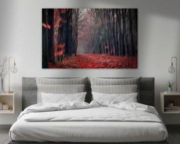 Red forest walk through  van Sabine Bartels