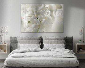 Keukenhof bloemen Wit 2 von Antine van der Zijden