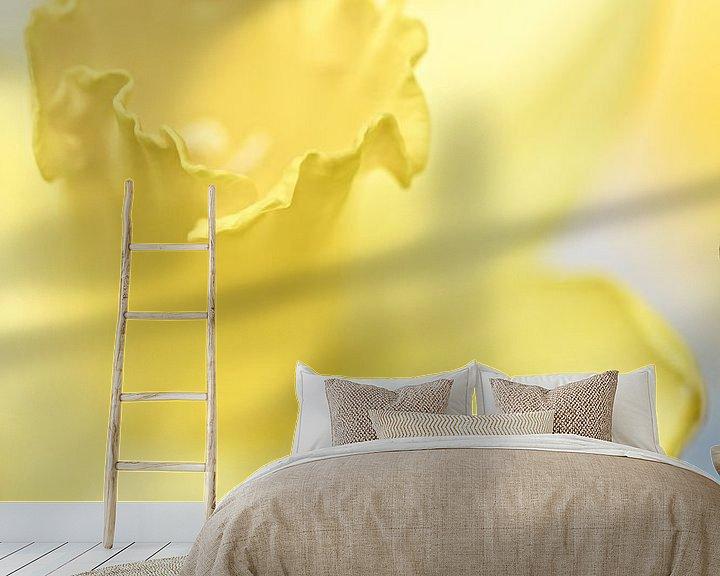 Sfeerimpressie behang: She shines so bright.... (bloem, narcis) van Bob Daalder