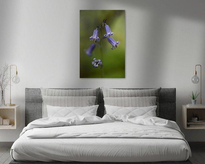 Sfeerimpressie: the blue wood hyacinth van Koen Ceusters