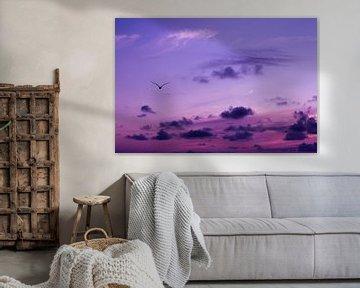 Roze-paarse lucht met vogel van Evelyne Renske