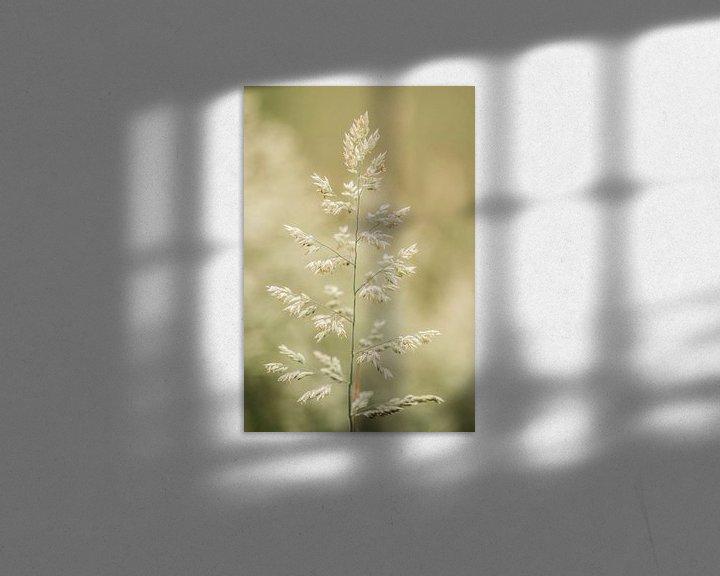 Sfeerimpressie: Gras... van Maja Ooms
