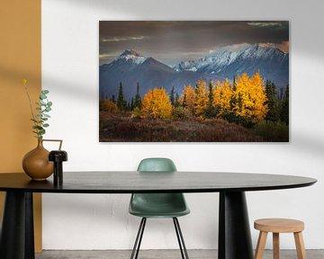 Herfst landschap van Chris Stenger