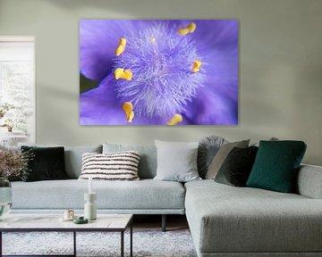 Tag-Blume von Ingrid Bargeman