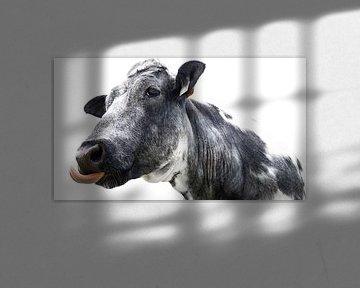 Een grappige koe sur Anna Krasnopeeva