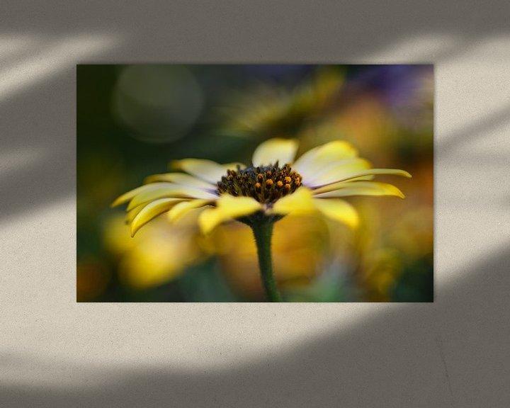 Sfeerimpressie: Dancing Petals.... van LHJB Photography