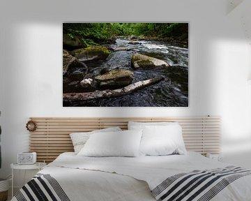Landscape on the river Bode in the Harz area, Germany van Rico Ködder