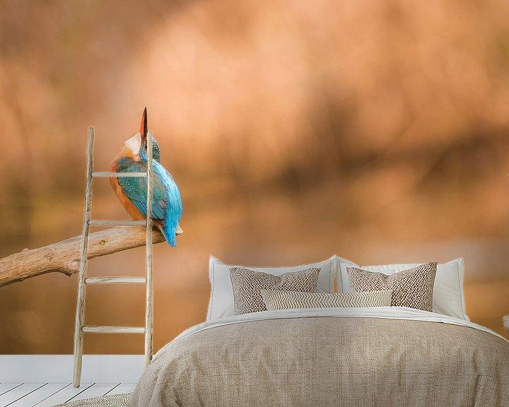 Sfeerimpressie behang: ijsvogel van Bart Vodderie