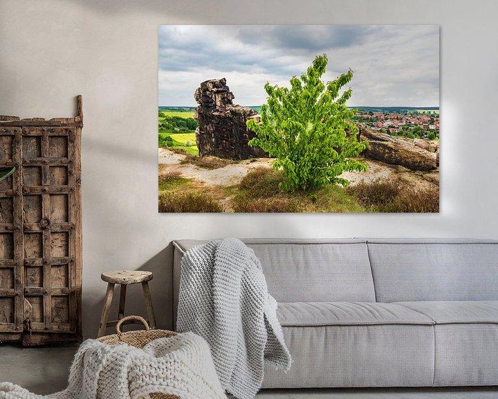 Sfeerimpressie: Landscape with trees and rocks in the Harz area, Germany van Rico Ködder