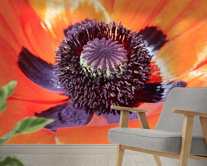 Impression: poppy sur Falko Follert