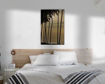 Palmbomen in silhouet van Dirk Verwoerd